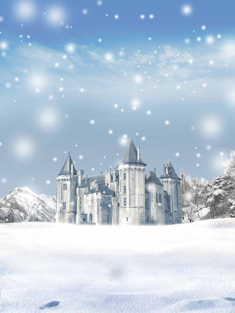 Fox Rolled Snow Winter Castle Vinyl Photo Backdrop-Foxbackdrop
