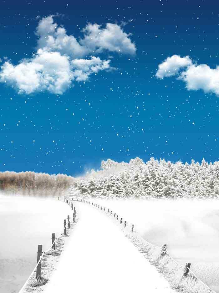 Fox Rolled Winter Snow Bridge Vinyl Photography Backdrop-Foxbackdrop