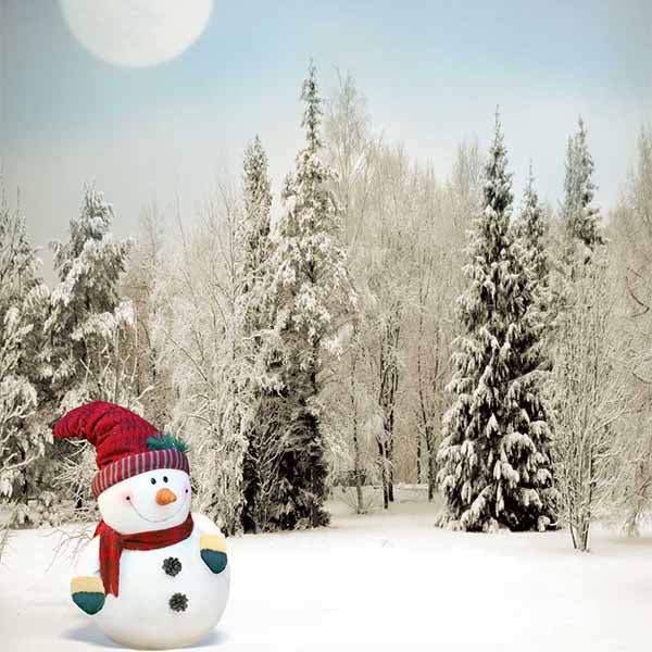 Fox Rolled Outdoor Winter Snowman Vinyl Photography Backdrop-Foxbackdrop