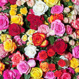 Load image into Gallery viewer, Fox Rolled Colorful Flowers Vinyl Photography Backdrop-Foxbackdrop