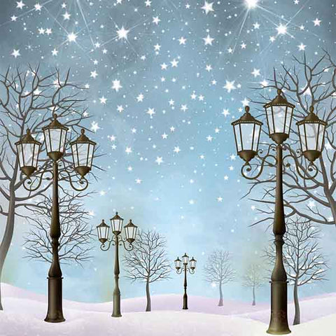 Fox Rolled Winter Snow Lights Vinyl Photo Backdrop