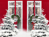 Fox Rolled Red Door Snow Christmas Vinyl Backdrop