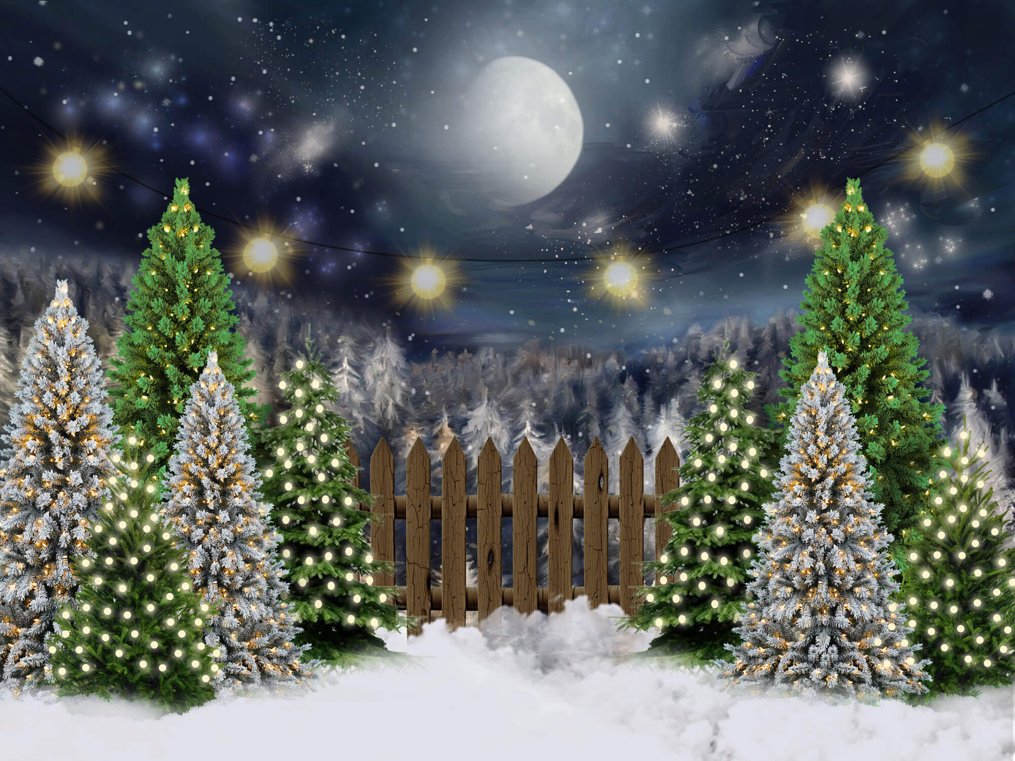 Fox Rolled Night Christmas Children Photos Vinyl Backdrop-Foxbackdrop