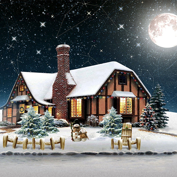 Fox Christmas Snow House Night Moon Vinyl Backdrop