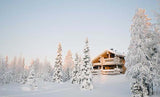 Fox Rolled Winter Snow Cabin Vinyl Photography Backdrop-Foxbackdrop
