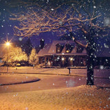 Fox Rolled Vinyl Winter Night Snow Light Vinyl Backdrop-Foxbackdrop