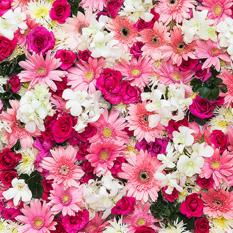 Fox Rolled Colorful Flowers Vinyl Photography Backdrops