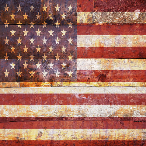 Fox 4th of July Retro American Flag Vinyl Backdrop