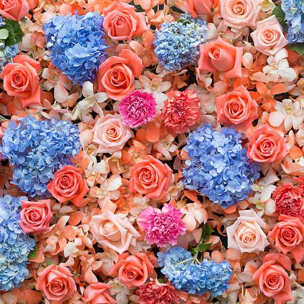 Fox Rolled Flowers Vinyl Photo Backdrop for Photography-Foxbackdrop