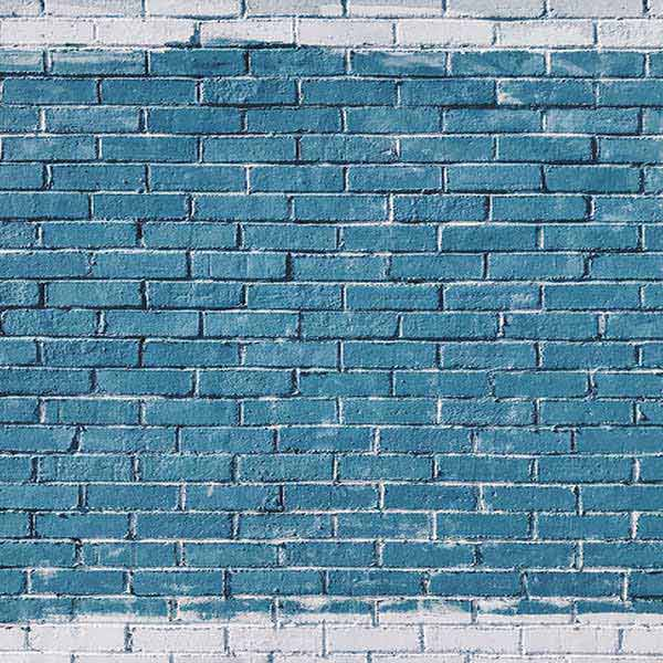Fox Rolled Vinyl Blue Brick Wall Photography Backdrop