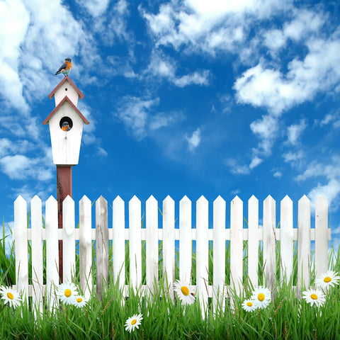 Fox Blue Sky Fence Grassland Children Photos  Backdrop