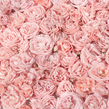 Load image into Gallery viewer, Fox Roll Pink Flowers Thick Vinyl Backdrops-Foxbackdrop