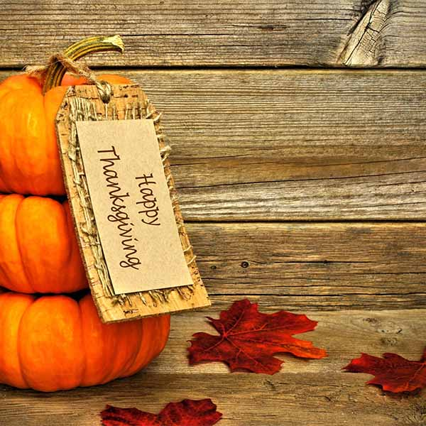 Fox Roll Thanksgiving Day Wood Vinyl Backdrop