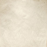 Fox Beige Abstract Portrait Vinyl Texture Photos Backdrop-Foxbackdrop