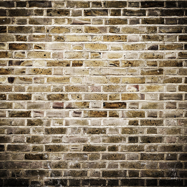 Fox Retro Brown Brick Wall Vinyl Photography Backdrop-Foxbackdrop
