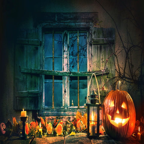Fox Rolled Halloween Window Vinyl Photos Backdrop