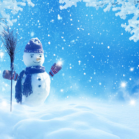 Fox Rolled Winter Snowman Children Photo Vinyl  Backdrop