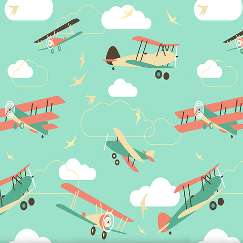 Fox Cloud Airplane Children Birthday Photos Vinyl Backdrop