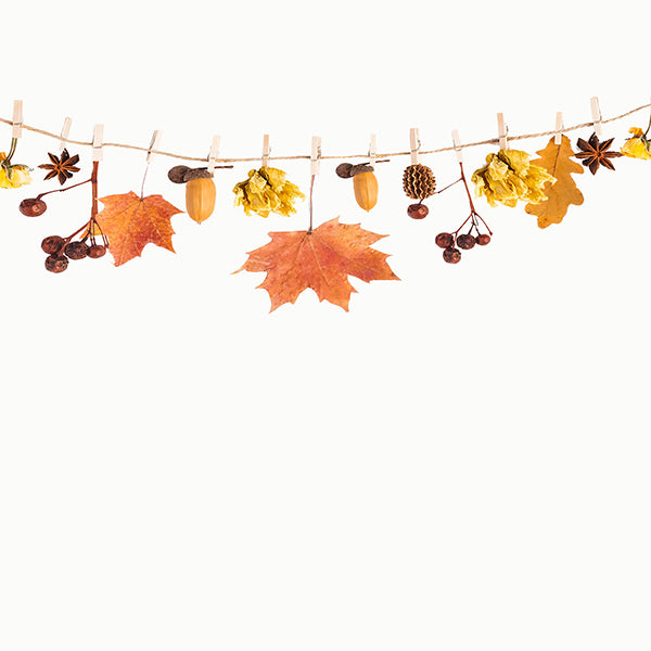 Fox Beige Autumn Leaves Vinyl Photography Backdrops