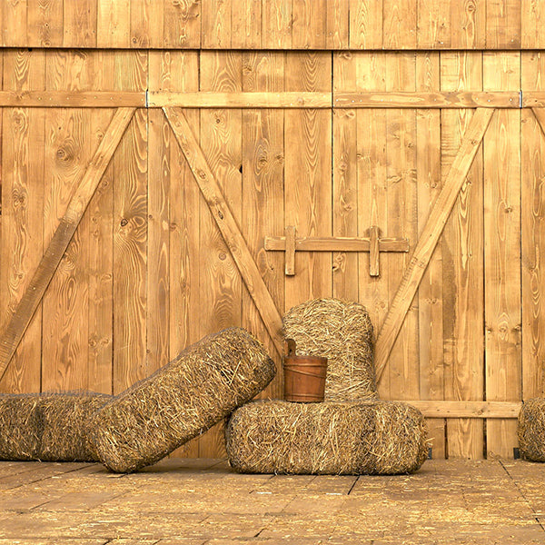 Fox Retro Autumn Wood Door Straw Vinyl Backdrops