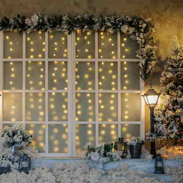 Fox Rolled Winter Snow Lights Window Christmas Vinyl Backdrop