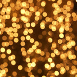 Fox Rolled Golden Bokeh Glitter Vinyl Photo Backdrop