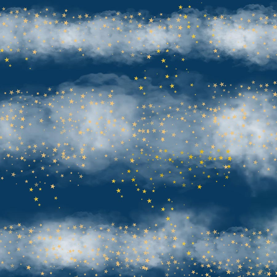Fox Dark Blue Sky Stars Clouds Vinyl Children Backdrop-Foxbackdrop