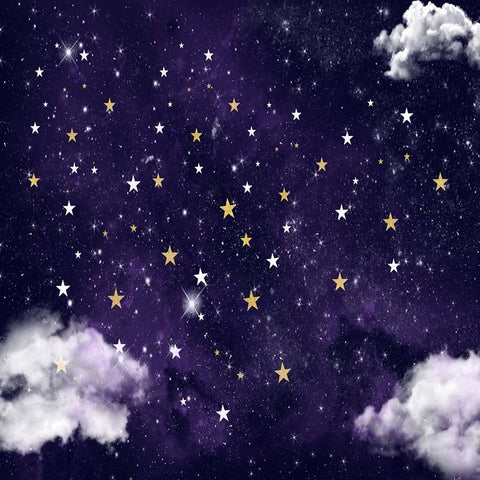 Fox Rolled Newborn Baby Night Sky Stars cloud Vinyl Backdrop