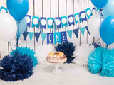 Fox Rolled Blue Balloons Wall Boy Birthday Vinyl Backdrop
