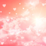 Fox Rolled Pink Sky Shine Vinyl Valentine Backdrop