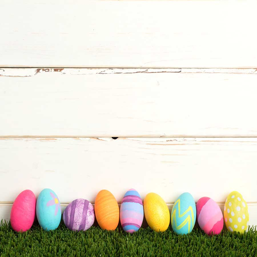Fox Rolled Vinyl White Wood Easter Photography Backdrop-Foxbackdrop