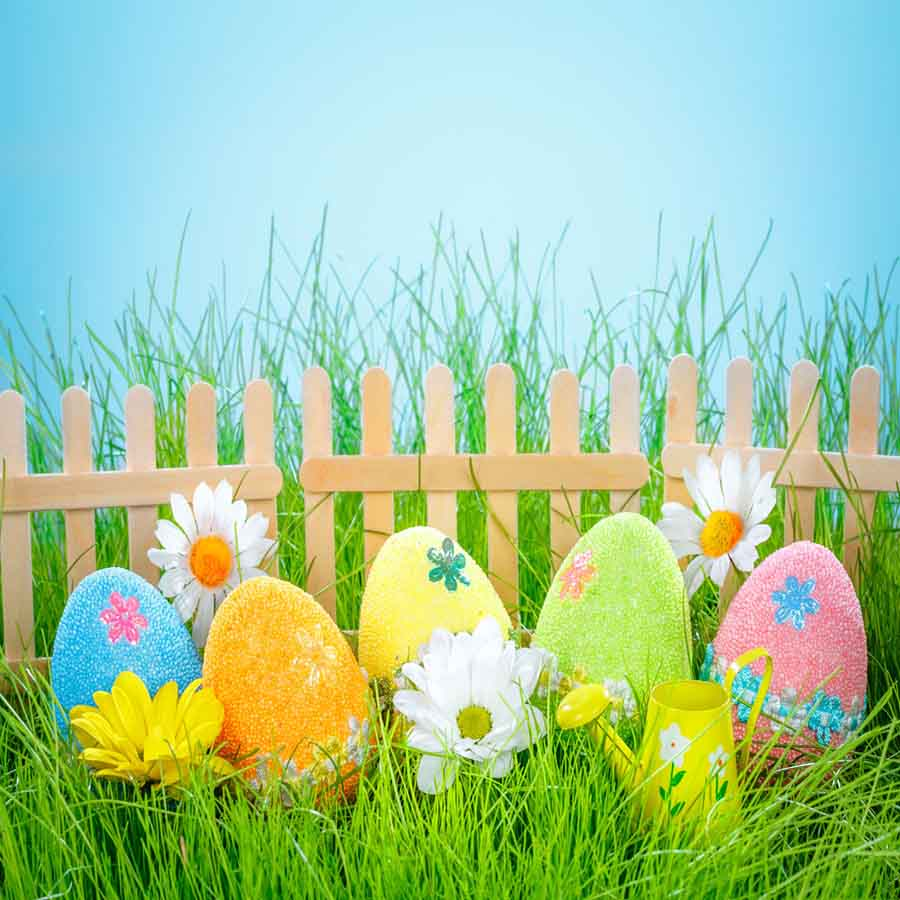Fox Rolled Eggs Sky Fence Easter Vinyl Backdrops-Foxbackdrop