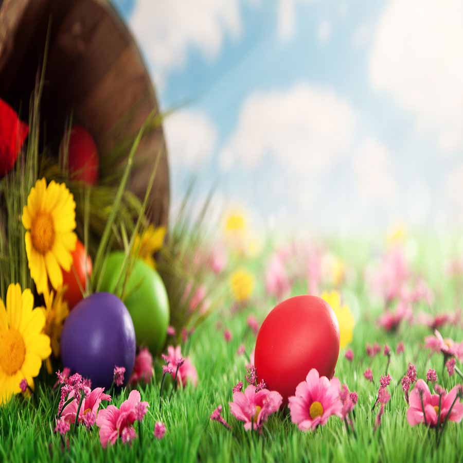 Fox Rolled Eggs Grass Vinyl Easter Photo Backdrops-Foxbackdrop