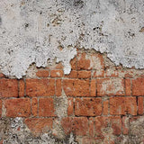 Fox Rolled Old Brick Cement Wall Vinyl Photography Backdrop-Foxbackdrop