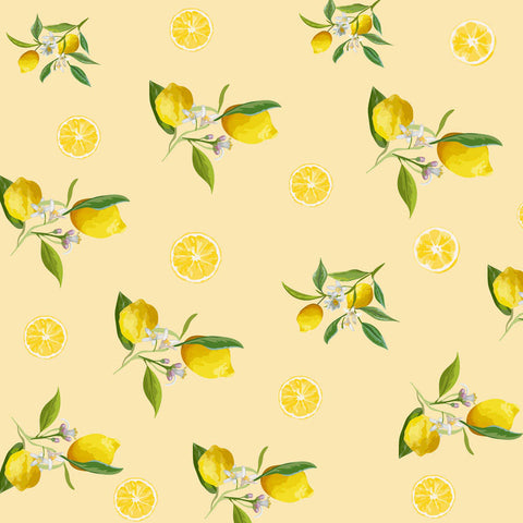 Fox Rolled Vinyl Summer Lemon Children Photography Backdrop