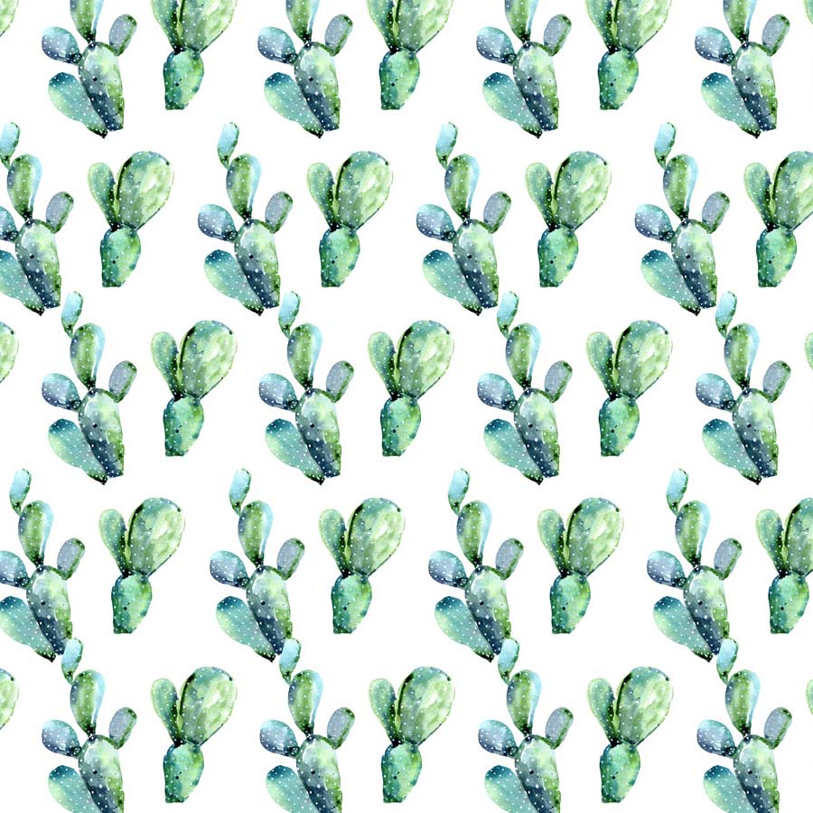 Fox Rolled Green Cactus White Children Vinyl Backdrop-Foxbackdrop