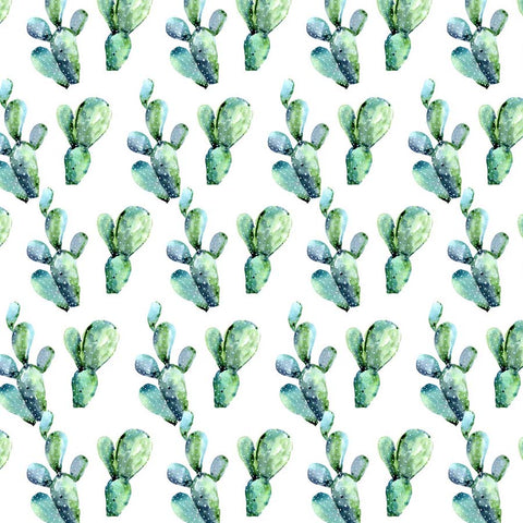 Fox Rolled Green Cactus White Children Vinyl Backdrop