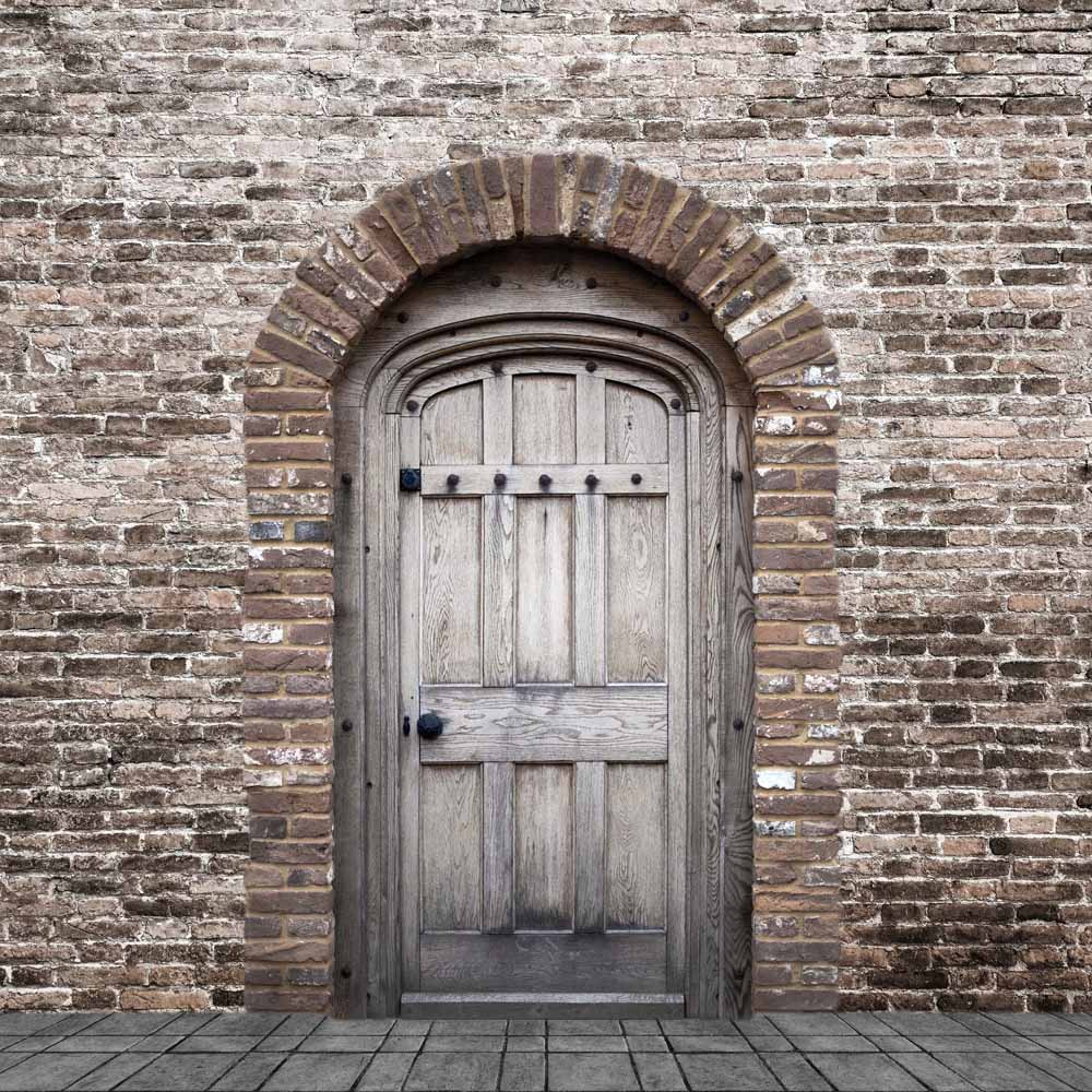 Fox Rolled Brick Wall Door Vinyl Photo Backdrop