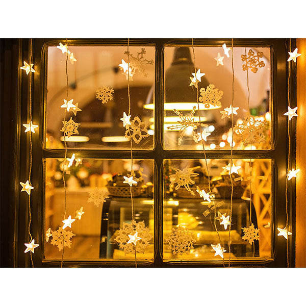 Fox Window Shiny Lights Christmas Vinyl Backdrop