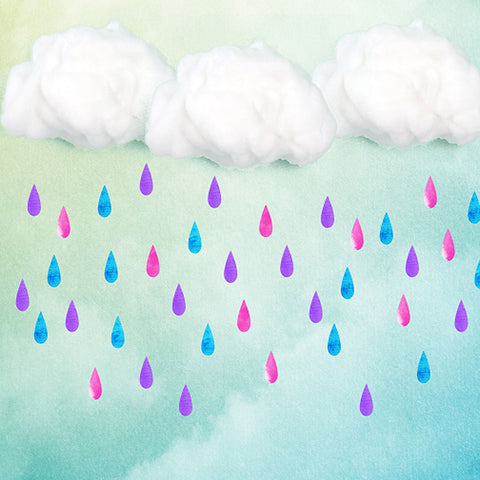 Fox Rainbow Raindrop Clouds Children Birthday Vinyl Backdrop