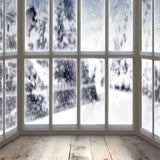 Fox Rolled Window Snow Winter Vinyl Photos Backdrop