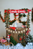 Fox Christmas Wood Stand Vinyl Photos Backdrop