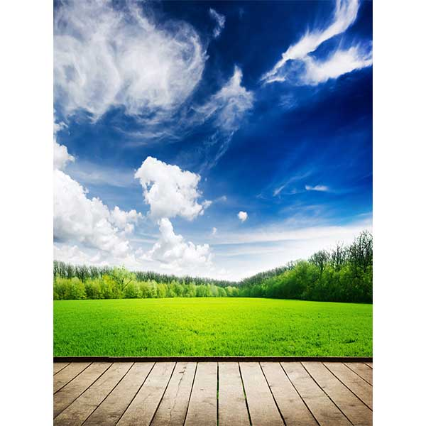 Fox Rolled Spring Grassland Vinyl Photo Backdrops-Foxbackdrop