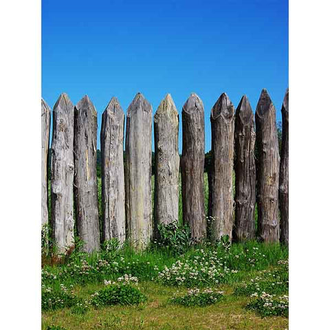 Fox Rolled Spring Fence Sky Vinyl Backdrops for Photography