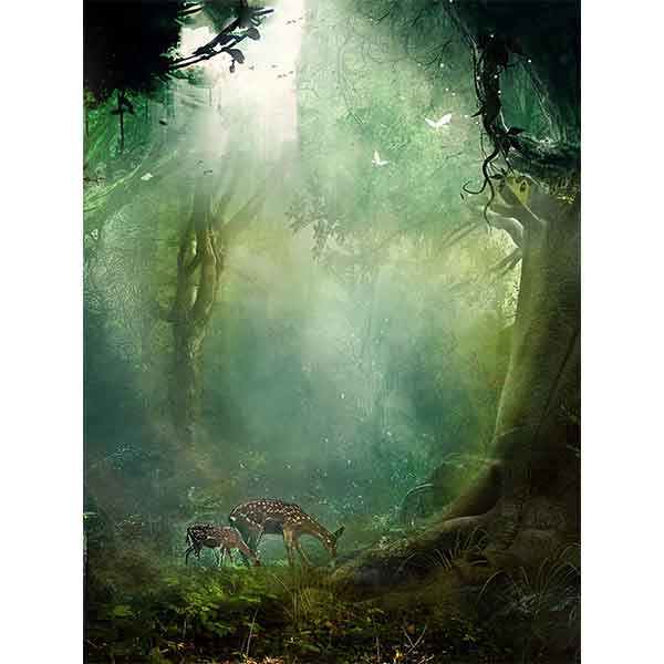 Fox Rolled Spring Jungle Trees Vinyl Photo Backdrops