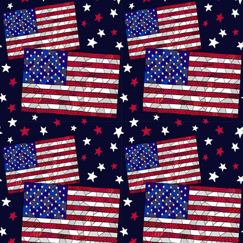 Fox American Flag Stars 4 of July Vinyl Independence Backdrop