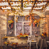Fox Rolled Autumn Window Courtyard Vinyl Photo Backdrop