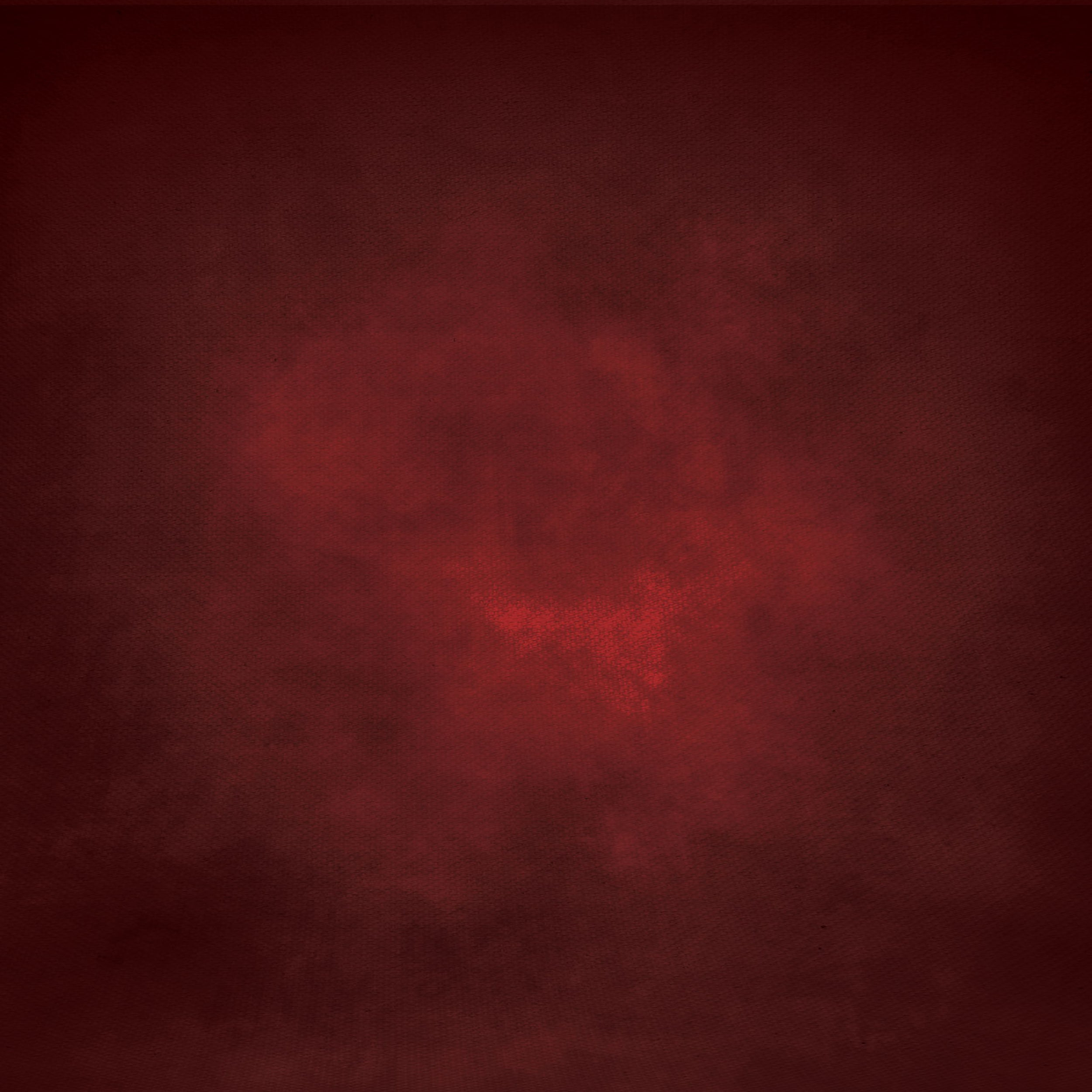 Fox Abstract Dark Red Vinyl Photography Backdrop