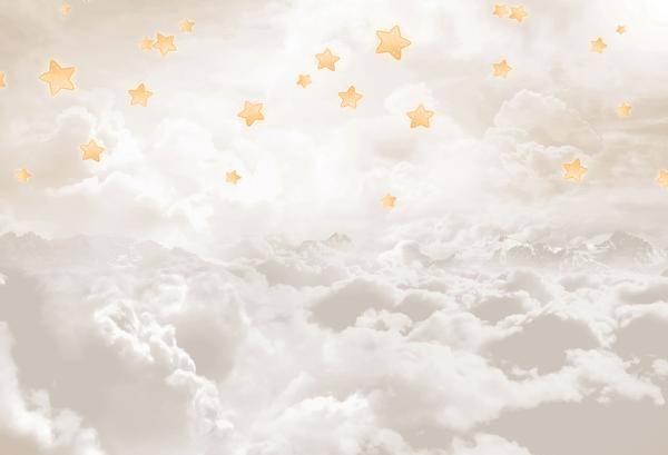 Fox Sky Clouds Stars Children Vinyl Backdrop-Foxbackdrop