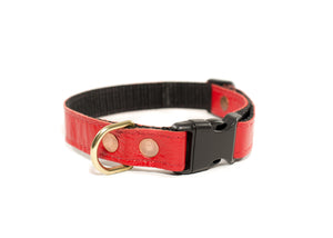 QR Collar - Red